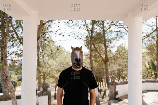 Unrecognizable male wearing weird rubber horse mask standing in park on sunny day