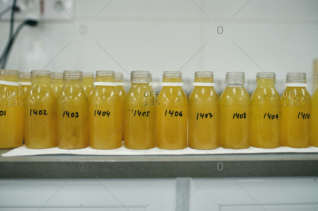 Row of glass bottles with yellow chemical liquid placed on table in laboratory for conducting experiments