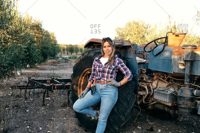 Satisfied adult female farmer leaning on wheel of agricultural machine during harvesting season on olive plantation