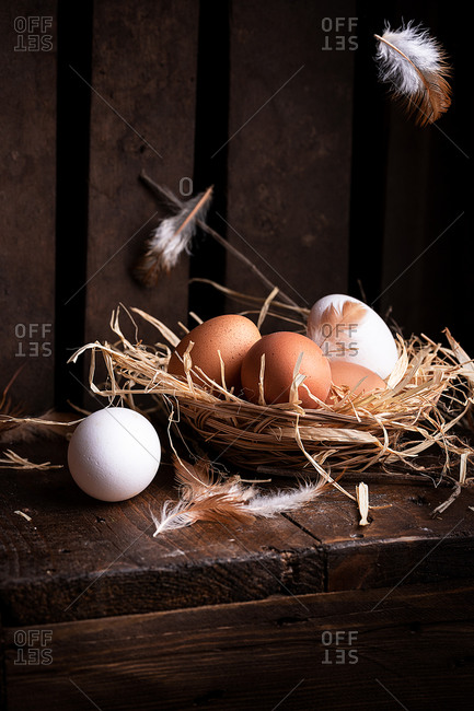 White and brown chicken eggs in straw nest placed on wooden surface with feathers