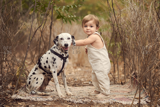 Side view full body of adorable toddler in overall standing petting Dalmatian dog near tall plants while smiling and looking at camera