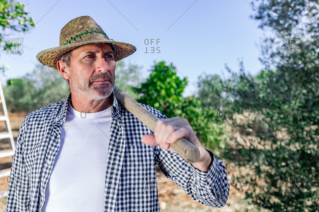 Confident male worker wearing straw hat and casual outfit standing among green trees during harvest