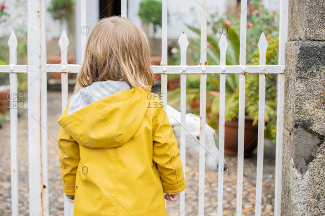 Back view of anonymous kid wearing vibrant yellow raincoat looking at dog behind metal fence while standing in street