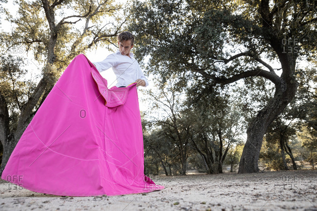 From below focused slim male bullfighter in black pants and white shirt holding pink cloak performing gracefully before corrida in nature