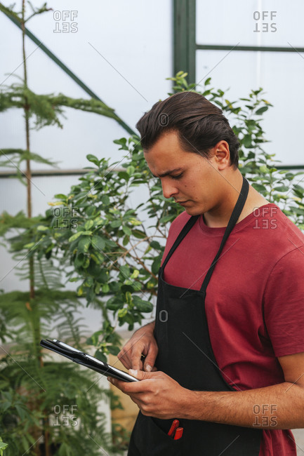 Side view of focused man with brown hair using tablet while working in greenhouse with plants at daytime