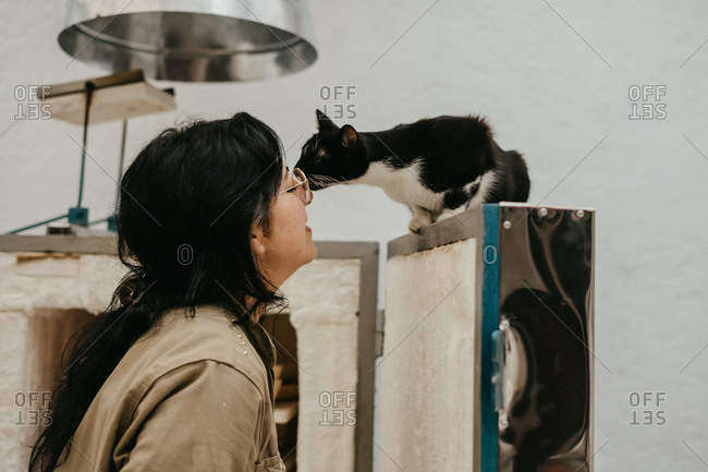 Side view of tender female artisan touching muzzle of adorable fluffy kitty in cozy art studio