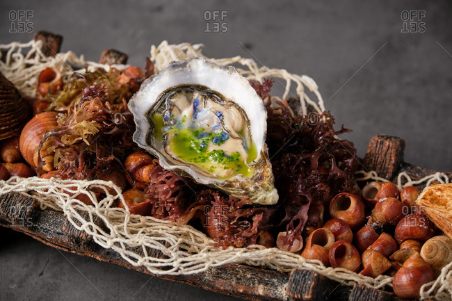 Closeup of palatable oyster in shell served in plate with various seafood ingredients in Asian restaurant