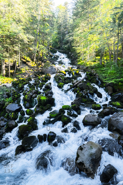 Spectacular scenery of rapid river cascade flow Uelhs deth Joeu surrounded by mossy rocks in mountainous forest in Val d'Aran, Catalonia in Spain