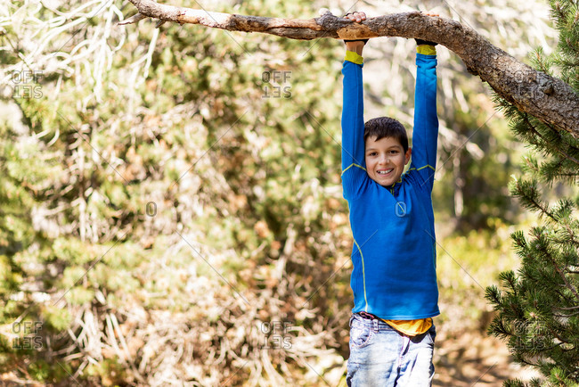 Delighted playful teenager hanging from pine tree branch while having fun in forest on sunny day and looking at camera