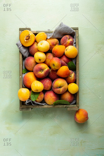 Overhead view of crate with summer peaches and apricots on light green surface