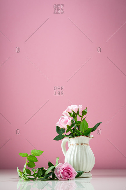 Small fresh pink roses in vintage vase in front of pink background