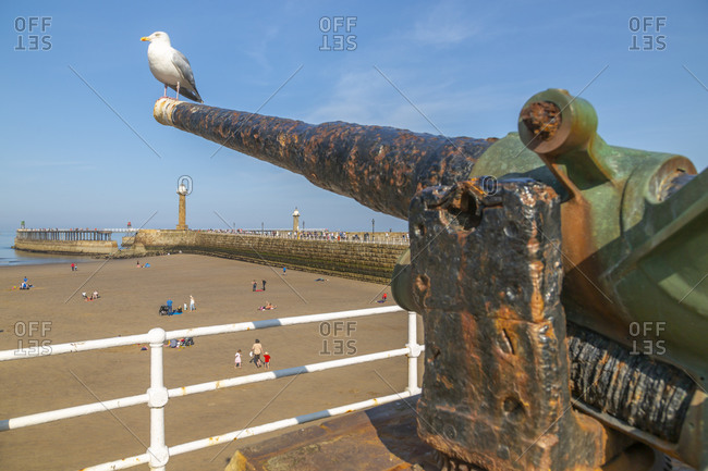 View of cannon overlooking Whitby West Pier and lighthouse, Whitby, Yorkshire, England, United Kingdom, Europe