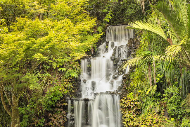 Waterfall in Pukekura Park, botanical garden, New Plymouth, Taranaki, North Island, New Zealand, Pacific