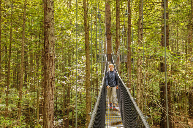 March 8, 2020: Redwood Treewalk, Canopy Pathway, Rotorua, Bay of Plenty, North Island, New Zealand, Pacific