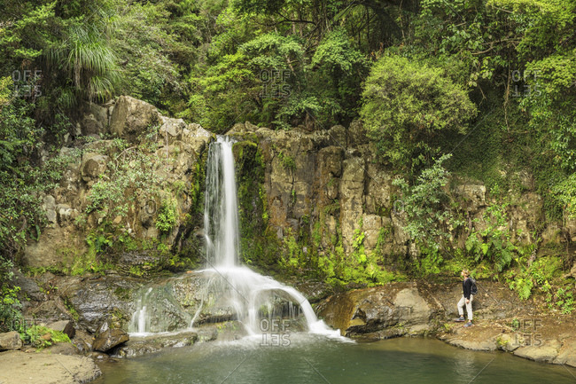March 13, 2020: Waiau Falls, Waikato, Coromandel Peninsula, North Island, New Zealand, Pacific