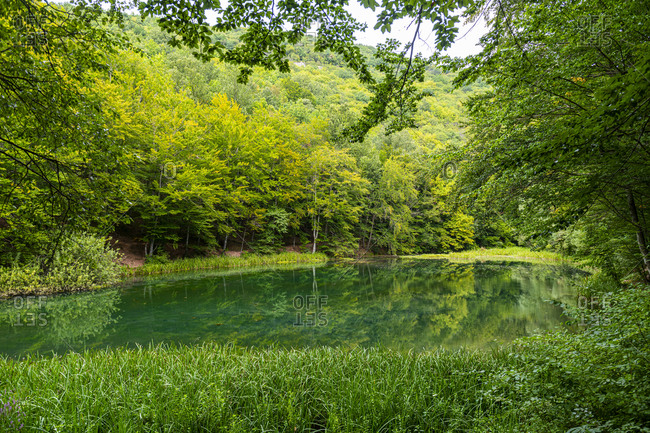 Beautiful lake in the nature reserve Grza, Serbia, Europe