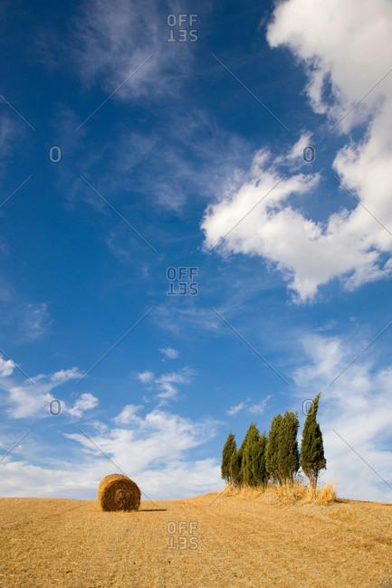 Hay bale on Tuscan landscape