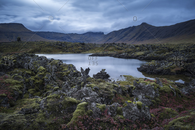 Pond in lava field, Snaefellsnes Peninsula, Iceland