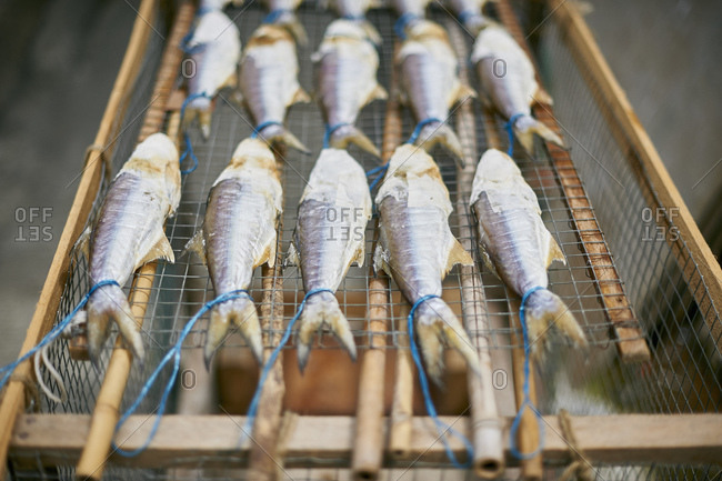 Fish drying on rack, Tai O, Hong Kong