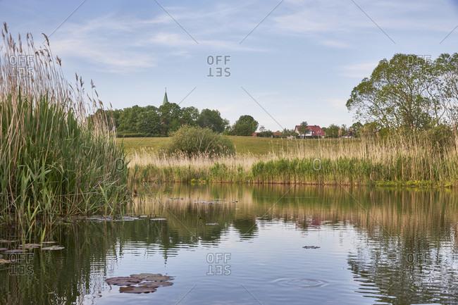 Germany, mecklenburg-west pomerania, north western pomerania, recknitz, pantlitz, landscape, river