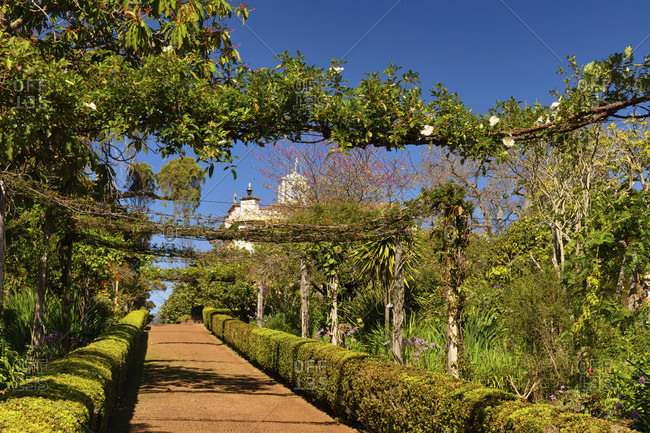 Palheiro gardens in funchal with exotic trees, several themed gardens, chapel, madeira, portugal