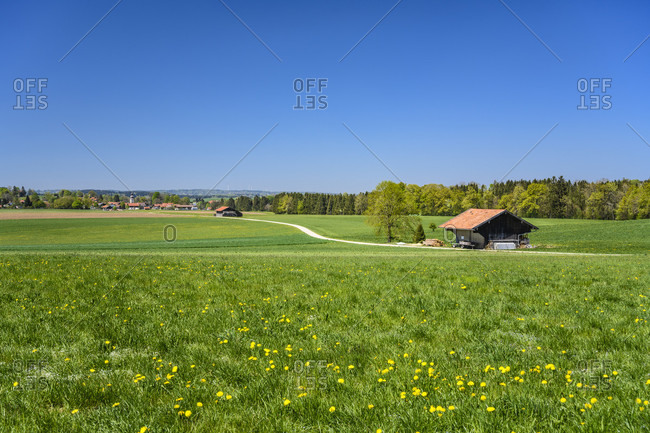 Germany, bavaria, upper bavaria, tiler land, eagling, thanning district, cultural landscape