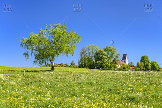 Germany, bavaria, upper bavaria, tiler land, eagling, neufahrn district, spring meadow with st. johannes baptist church