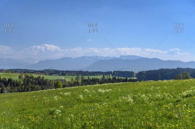 Germany, bavaria, upper bavaria, tiler land, dietramszell, groveled district, spring landscape against pre-alps