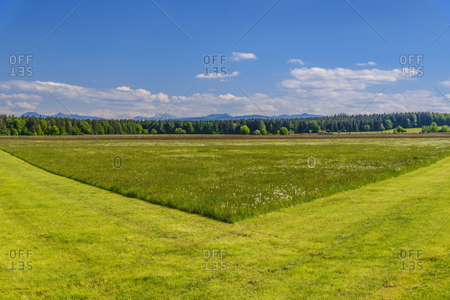 Germany, bavaria, upper bavaria, tiler land, dietramszell, baiernrain district, spring landscape against alpine chain