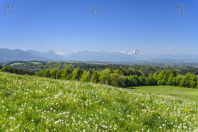 Germany, bavaria, upper bavaria, tiler land, dietramszell, peretshofen district, peretshofer home, spring meadow against alpine chain