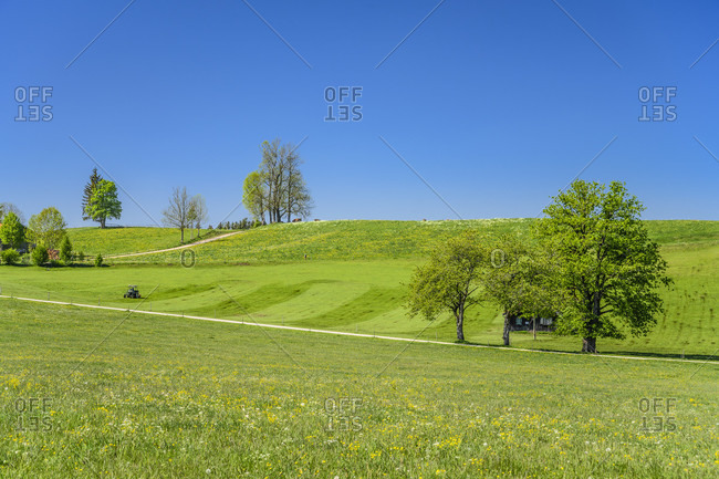 Germany, bavaria, upper bavaria, tiler land, dietramszell, peretshofen district, peretshofer home, spring meadow