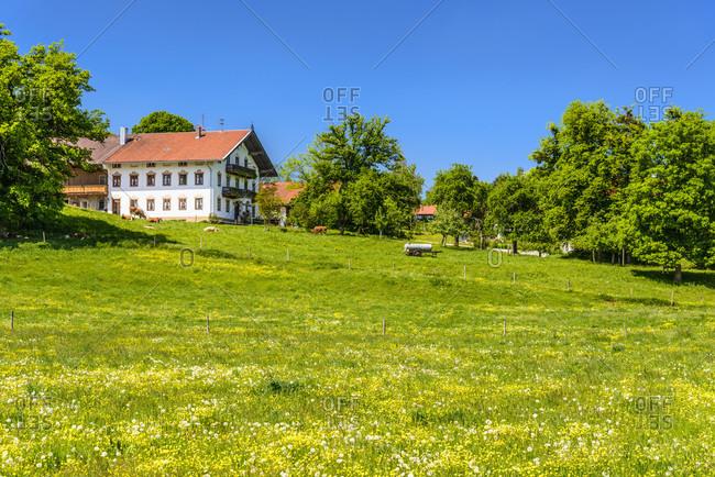 Germany, bavaria, upper bavaria, tiler land, dietramszell, berg district, spring landscape with a farm