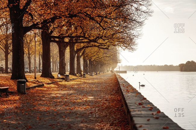 Autumn at the maschsee in hanover, lower saxony, germany