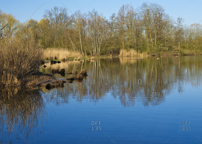 """Europe, germany, hesse, giessener land, city of giessen, pond in the nature reserve """"wieseck-auen"""""""