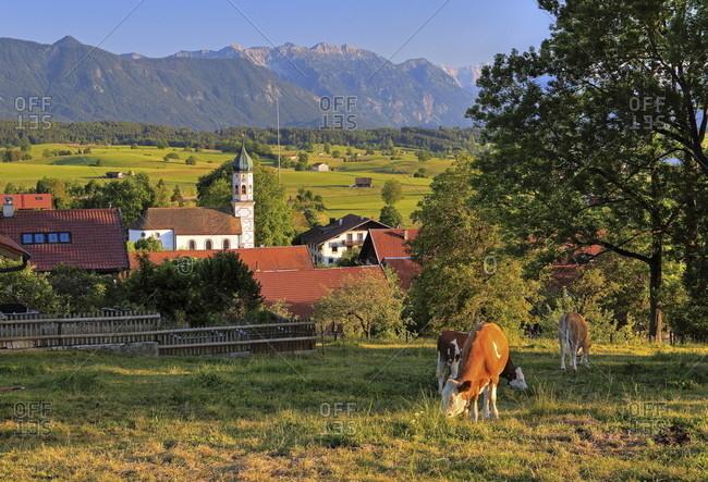 Village center with church against estergebirge (2086m), aidling, das blaue land, upper bavaria, bavaria, germany