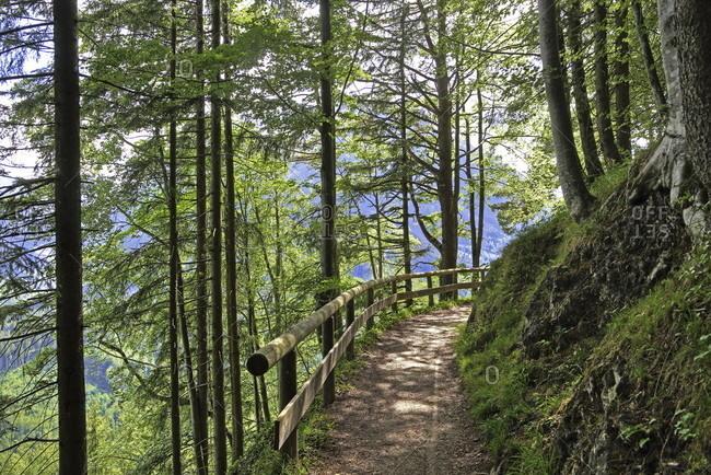 Brine pipeline route, ramsau bei berchtesgaden, berchtesgadener land, upper bavaria, bavaria, germany