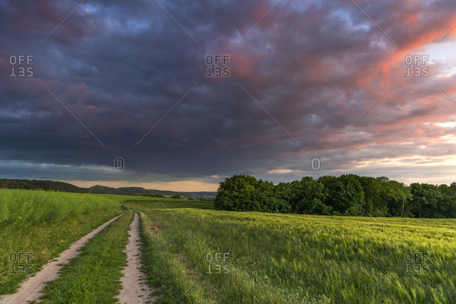 Evening walk with a view of the leuchtenburg, thuringia, germany