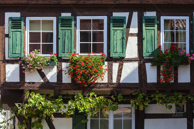 Half-timbered house, flowers, house, live