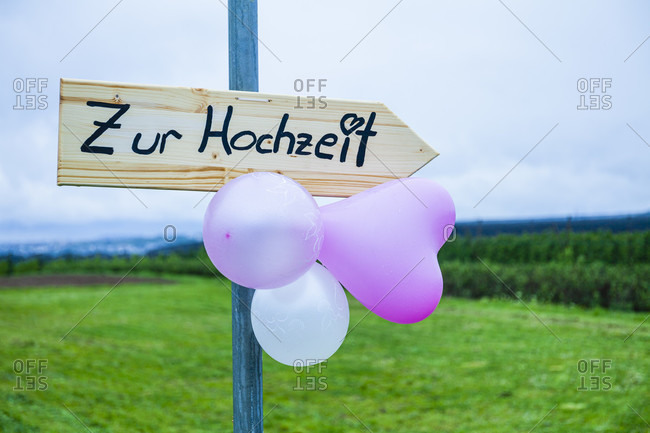 Wedding, signpost, wood, meadow, balloon,