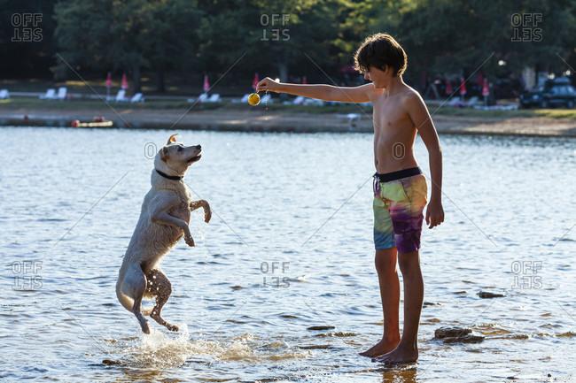 Boy, child, dog, sea, play, jump