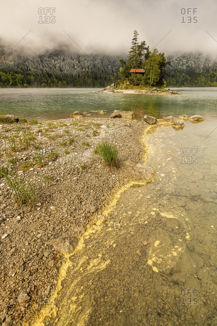 Yellow pollen from coniferous trees drifts on the banks of the eibsee in the wetterstein mountains in spring. in the background a small island with a log cabin and a red roof, as well as snow on the forest and overcast sky.