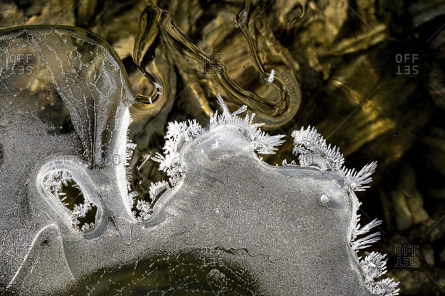 Ice crystals in the isar stream bed with different shapes and structures