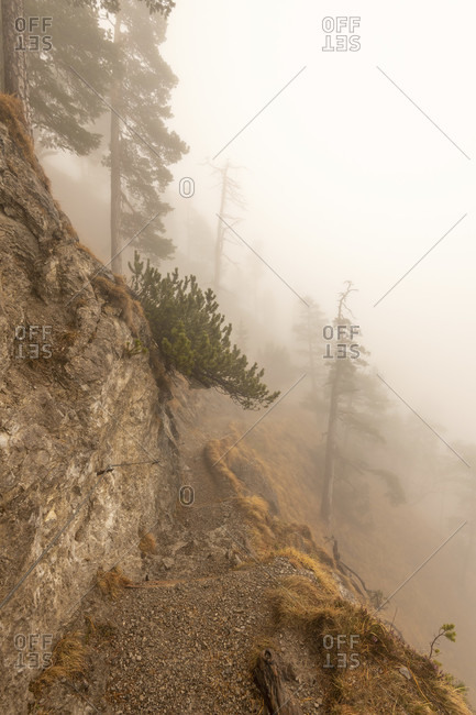Hiking trail to the Herzog stand. light wire rope safety mark the path along the rock and between trees.