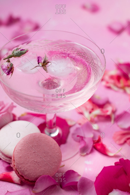 Pink gin tonic cocktail with dried rose buds