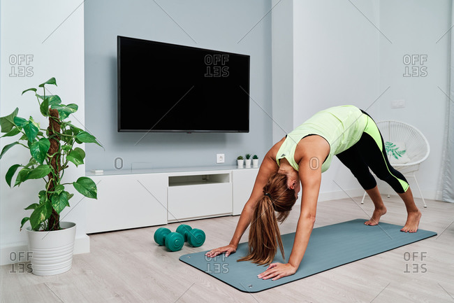 Side view of slim focused female stretching body and doing yoga in Downward facing Dog Pose while doing yoga on mat at home
