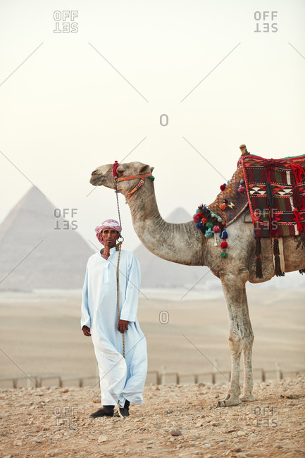 July 6, 2019: Bedouin with his camel in front of the Great Pyramids of Giza, Cairo