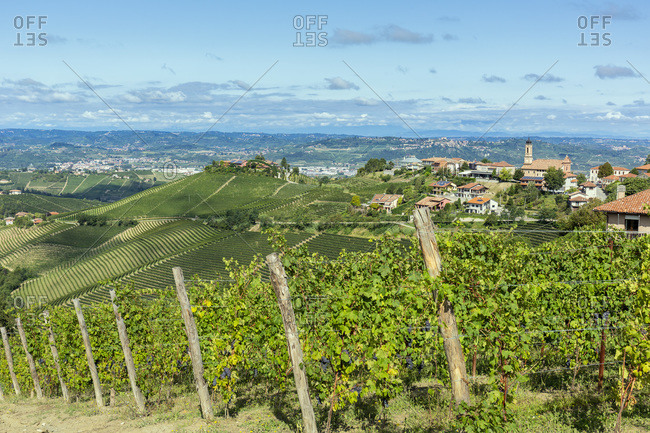 View of the village of Treiso with its vineyards