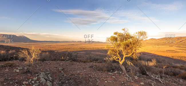 Sunset on the Chace, Wilpena Pound of Flinders Rangers National Park