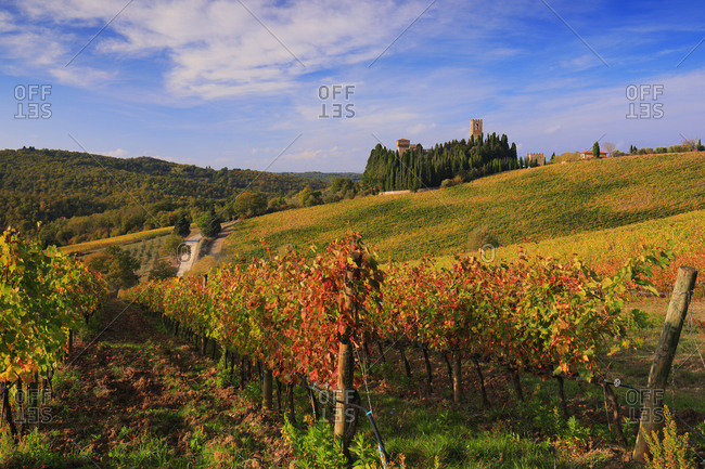 View of Badia a Passignano Abbey surrounded by autumn coloured vineyards