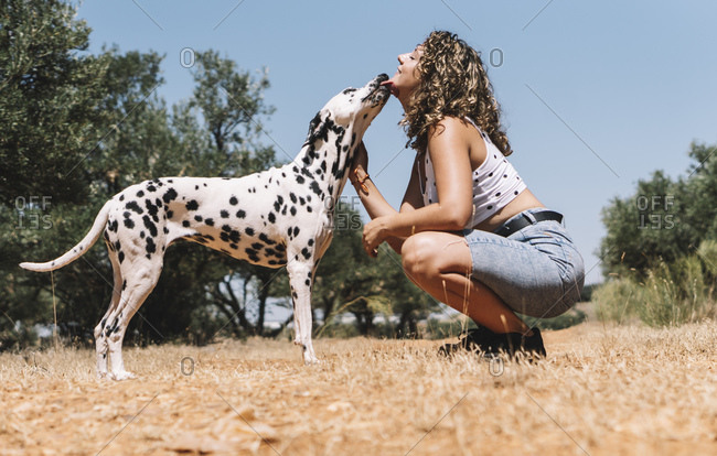 Dog licking face of young woman crouching on field during sunny day